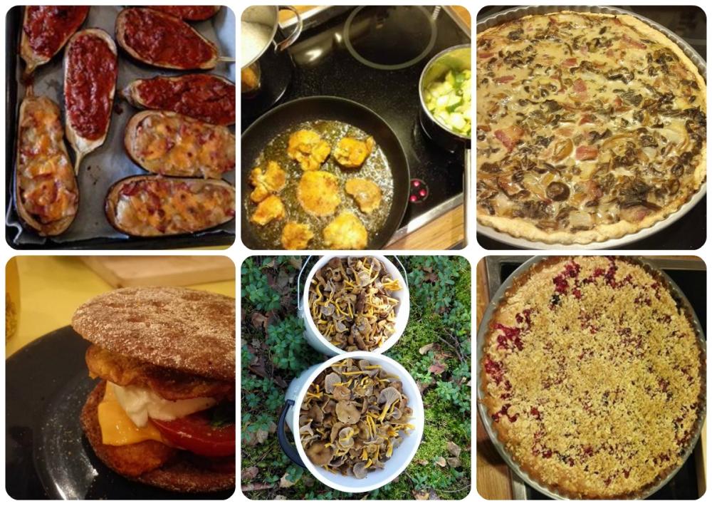 blogi_ruokakollaasi