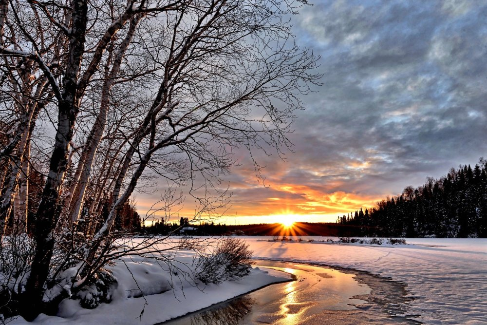 winter-landscape-2995987_1920_Janne